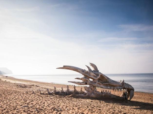 craneo-dragon